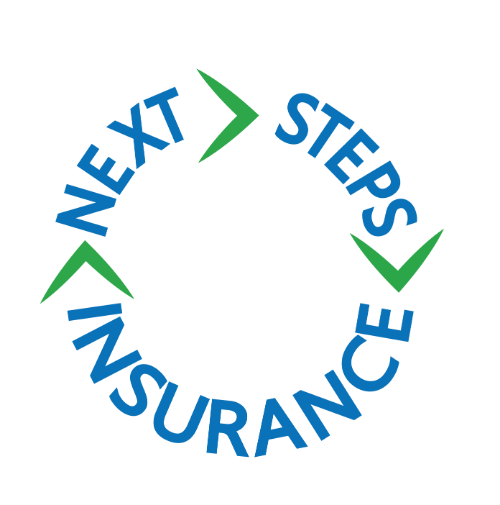 NEXT STEPS INSURANCE LLC